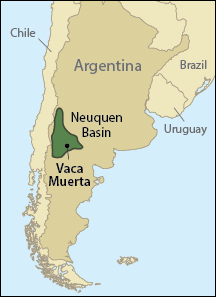 Argentina's Vaca Muerta began showing its true colors in 2010.